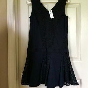 Ann Taylor Lace Trimmed Swing Dress NWT Size 2
